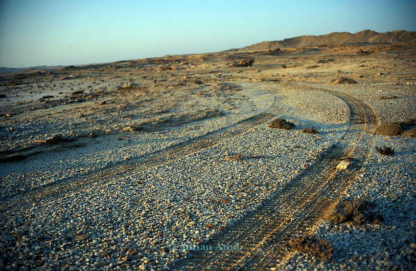 Tyre tracks from a vehicle in the Diamond coast region of the Namib desert.  The type of desert in this region means that tyre tracks remain as marks for eternity.