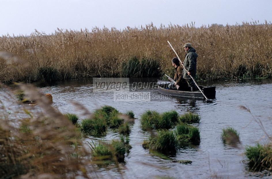 Europe/France/Pays de la Loire/44/Loire-Atlantique/Parc Naturel Régional de Brière/Ile Fedrun: Chasse dans les marais avec Guillaume Guerin et Alain Divet - AUTORISATION N°235-236