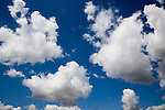 Fluffy white cumulus clouds in blue sky