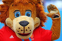 England hockey mascot during the Hockey World League Semi-Final match between England and Netherlands at the Olympic Park, London, England on 24 June 2017. Photo by Steve McCarthy.