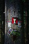Wizerunki religijne na drzewie przy szlaku na Rusinową Polanę, Tatry,