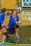 1 November 2015: Yeshiva University Maccabee Right Side and Outside Hitter Ilana Leggiere, a Sophomore from New York, NY, digs against the SUNY College at Old Westbury Panthers at SUNY Old Westbury in Old Westbury, NY. The Panthers edged out the Maccabees 3-2 in NCAA women's volleyball, Skyline Conference play. Mandatory Credit: Ed Wolfstein Photo *** RAW (NEF) Image File Available ***