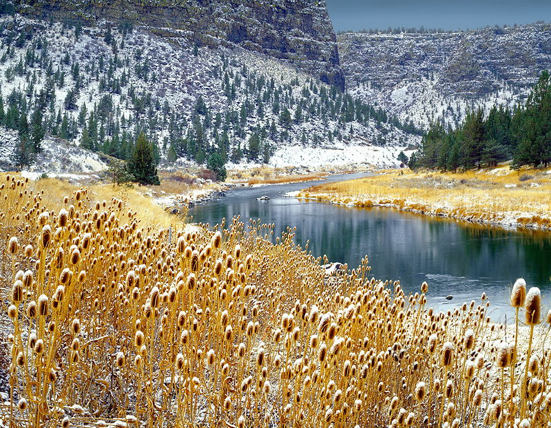 M00088M.tiff   Crooked River with snow on tistles. Oregon