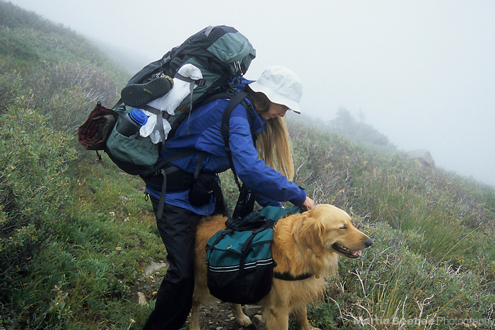 Backpacker adjusting dog packs, Sangre de Cristo Wilderness, San Isabel National Forest, Colorado