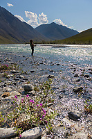 Fishing for Arctic char the Marsh Fork of the Canning River in the Arctic National Wildlife Refuge, Brooks Range mountains, Alaska.