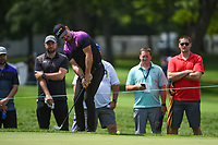 Rory Sabbatini (RSA) chips on to 3 during Rd4 of the 2019 BMW Championship, Medinah Golf Club, Chicago, Illinois, USA. 8/18/2019.<br /> Picture Ken Murray / Golffile.ie<br /> <br /> All photo usage must carry mandatory copyright credit (© Golffile | Ken Murray)