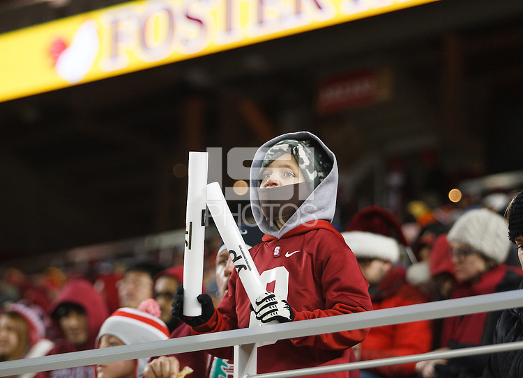 Santa Clara- December 30, 2014: Fan during the Stanford vs Maryland Foster Farms Bowl at Levi's Stadium in Santa Clara Tuesday night.<br /> <br /> Stanford won 45-21.