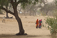 A dust storm in the desert Manvar on the way to Jaisalmer