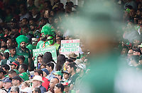 all calm for Pakistan? during Pakistan vs Bangladesh, ICC World Cup Cricket at Lord's Cricket Ground on 5th July 2019