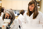 May 7, 2014. Durham, North Carolina.<br />  Instructor Annamarie Streilein MHS, PA-C, left, assists first year student Taylor Hoff during a GYN lab exercise.<br />  Instructor Annamarie Streilein MHS, PA-C, left,  works with first year students as they analyze microorganism samples during a GYN lab.<br />  The Duke University School of Medicine Physician Assistant Program is one of the top programs in the country for the training of physician's assistants. PA's are in high demand, and are taking over many of the tasks traditionally done by MD's, so the competition for the program is intense. In the most recent class, there were only 88 spots for a application pool of 1600.