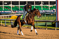 LOUISVILLE, KY - MAY 01: Blended Citizen gallops in preparation for the Kentucky Derby at Churchill Downs on May 1, 2018 in Louisville, Kentucky. (Photo by Alex Evers/Eclipse Sportswire/Getty Images)