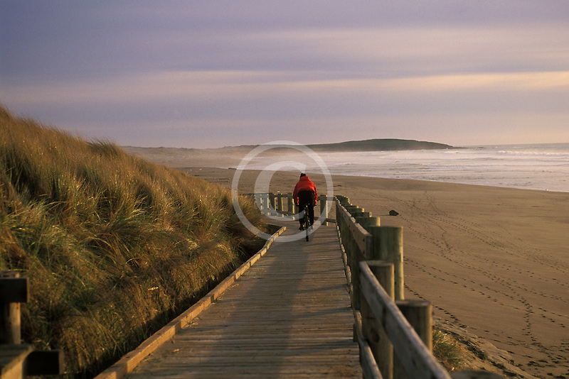 California, Bodega Bay, Boardwalk, Bodega Dunes