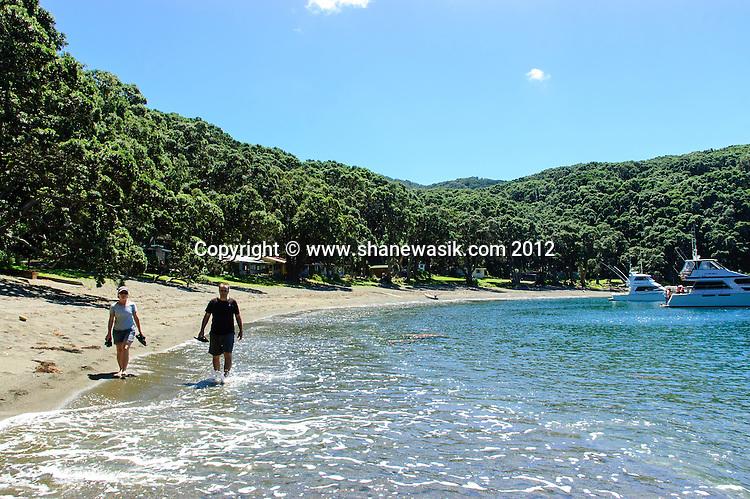 Walking along the beach at south east bay at Mayor Island / Tuhua in summer.