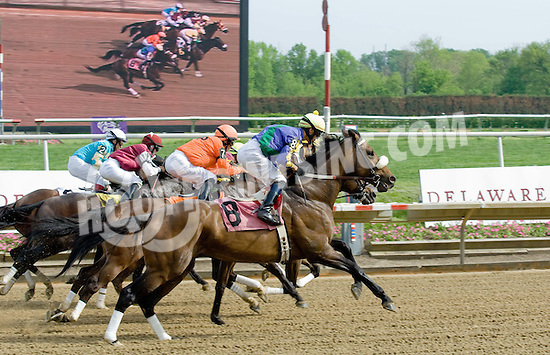 Tranquil Manner winning at Delaware Park on 5/1/10