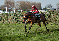 LIVERPOOL - APRIL 14: Tiger Roll #13, ridden by Davy Russell, guns for home after the last fence of the Randox Health Grand National Steeplechase at Aintree Racecourse in Liverpool, UK (Photo by Sophie Shore/Eclipse Sportswire/Getty Images)