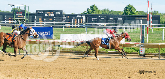 Golden Moon winning at Delaware Park on 9/7/15