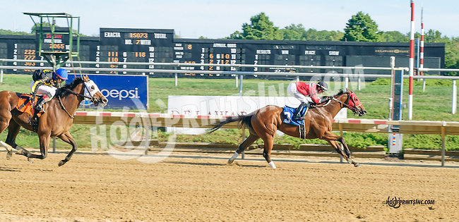 Golden Moon winning at Delaware Park on 9/7/15