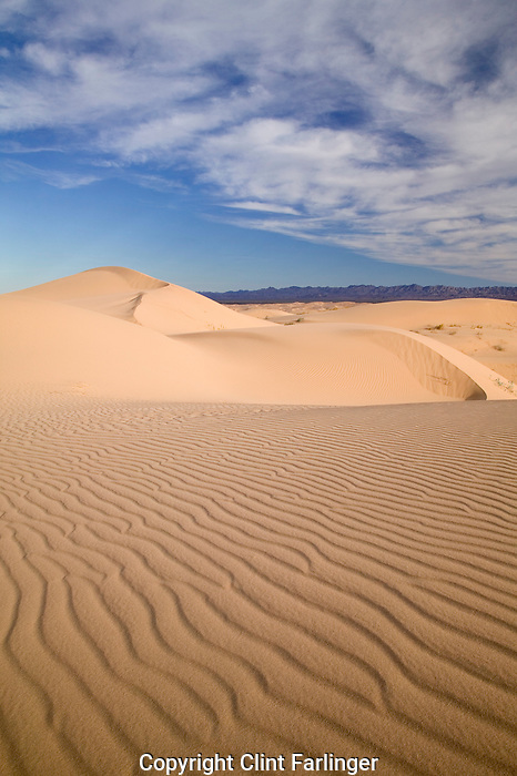 Imperial Sand Dunes, North Algodones Wilderness, California