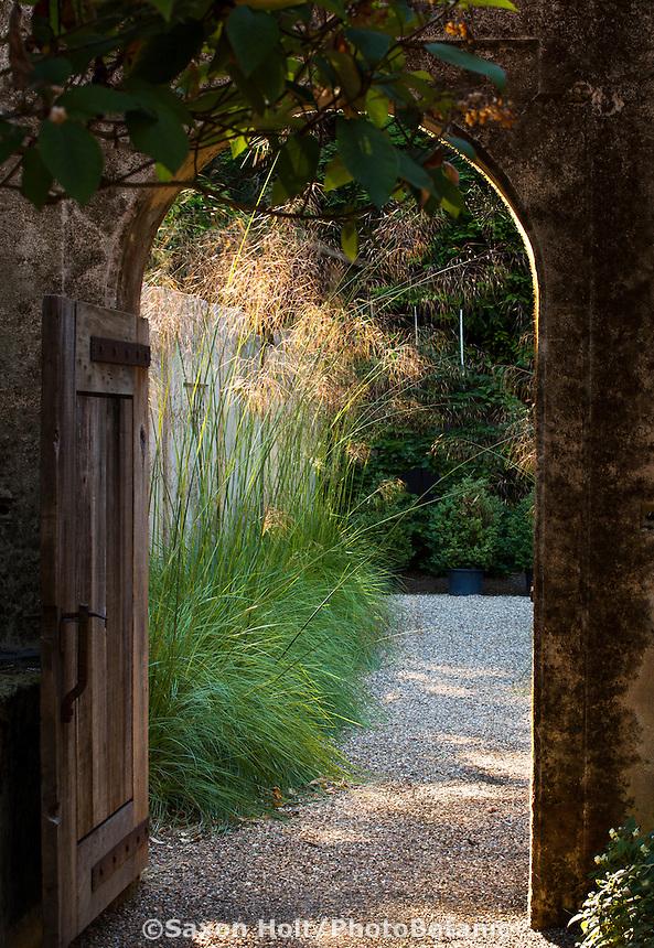 Sunlight on ornamental grass (Stipa gigantea) seen through doorway in wall in Gary Ratway garden