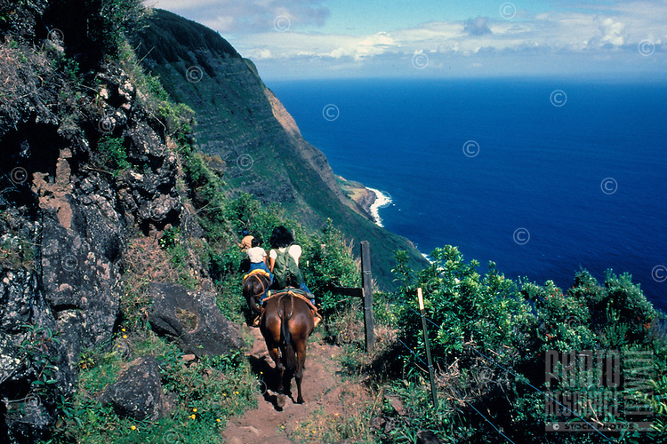 Mule riding down the switchback trail that leads to the Kalaupapa peninsula below