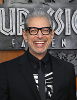 LOS ANGELES, CA - JUNE 12: Jeff Goldblum, at Jurassic World: Fallen Kingdom Premiere at Walt Disney Concert Hall, Los Angeles Music Center in Los Angeles, California on June 12, 2018. <br /> CAP/MPIFS<br /> &copy;MPIFS/Capital Pictures