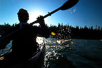Point of View shot POV of male paddlers , Sea Kayaking the San Juan Islands, WA.