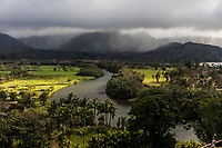 Aerial view of Hanalei River, with rain over the distant mountain range, Kaua'i.