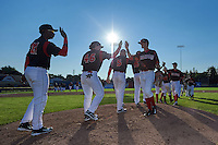 Batavia Muckdogs Brandon Rawe (22) high fives Joseph Chavez (46) and Galvi Moscat (27) after the first game of a doubleheader against the Mahoning Valley Scrappers on July 2, 2015 at Dwyer Stadium in Batavia, New York.  Batavia defeated Mahoning Valley 4-1.  (Mike Janes/Four Seam Images)