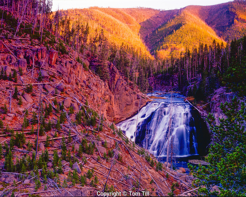 Gibbon Falls, Yellowstone Natinal Park, Wyoming, Gibbon RIver, 84 foot falls, discovered in 1872, Near Madison Junction