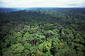 Amazonia, Brazil. Aerial view of unbroken forest on undulating ground; Roraima State.