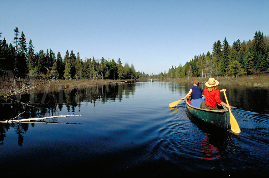 Couple Wilderness Canoeing in Algonquin Provincial Park. Huntsville Ontario Canada Algonquin Provincial Park.