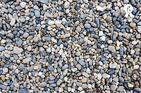 Pebbles (Licence this image exclusively with Getty: http://www.gettyimages.com/detail/95574854 )