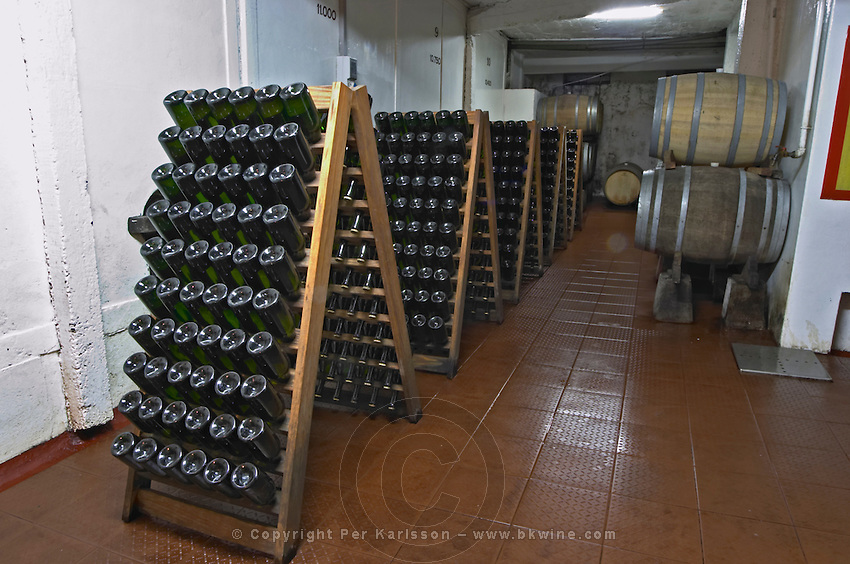 Stands, pupitres, for storing bottles of sparkling wine upside down after the second fermentation in bottle. Bodega Carlos Pizzorno Winery, Canelon Chico, Canelones, Uruguay, South America