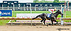 Including winning at Delaware Park on 6/12/13