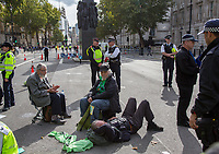 A 91-year-old Extinction Rebellion protestor on the road at Whitehall.<br /> .<br /> Environmental activists from Extinction Rebellion protest in London on 09 October 2019 in London, England.<br /> .<br /> Protesters plan to blockade the London government district for a two week period, as part of 'International Rebellion' taking place in over 60 cities around the world, calling for decisive and immediate action from governments in the face of climate and ecological emergency. <br /> .<br /> Photo by Andy Rowland.