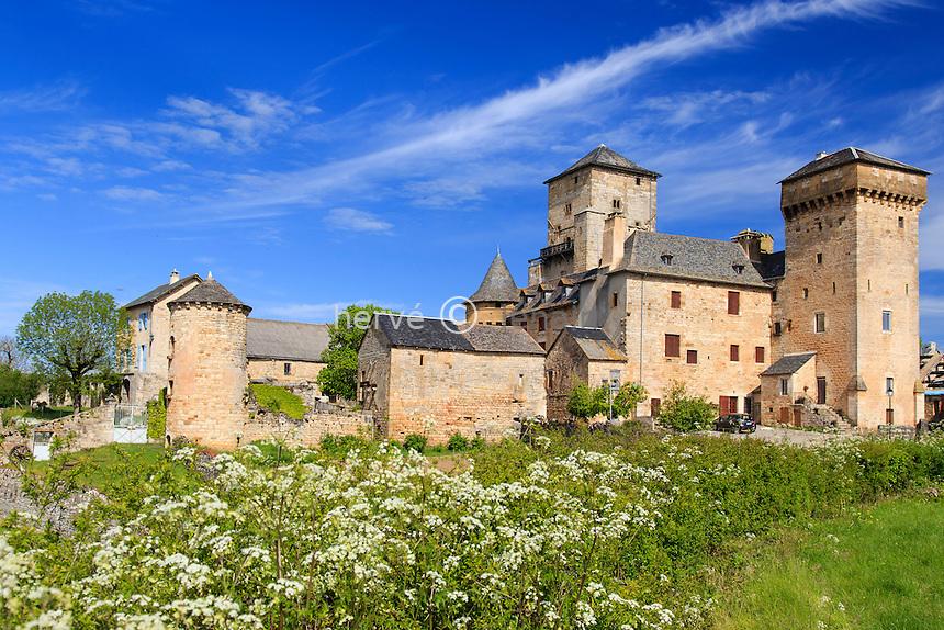 France, Aveyron (12), Pierrefiche, Château de la Galinière // France, Aveyron, Pierrefiche, la Galiniere castle