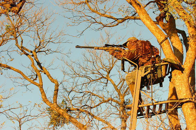 DEER HUNT 05.Muzzel  loader hunting Knox City Texas. Lawerence Taylor Pradco Outdoor Brands. Knight rifles. mossy oak camo. Tree stand. ...Copyrighted photos by David J. Sams (214)361-2276