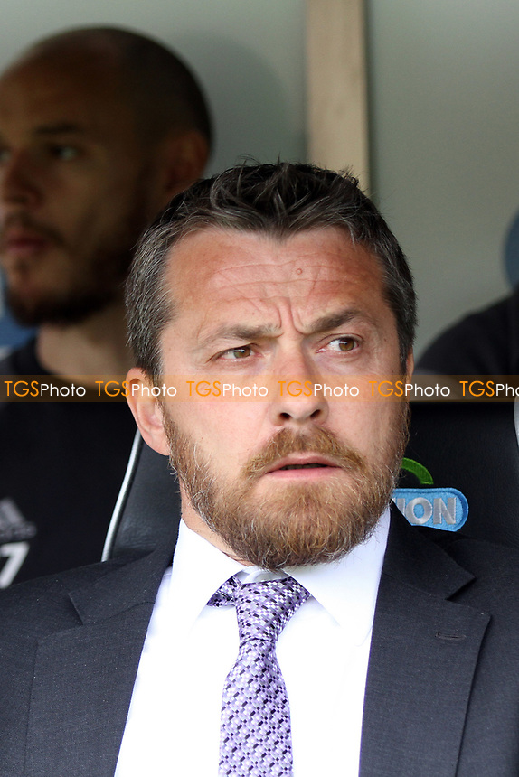 Fulham manager Slavisa Jokanovic during Norwich City vs Fulham, Sky Bet EFL Championship Football at Carrow Road on 14th April 2017