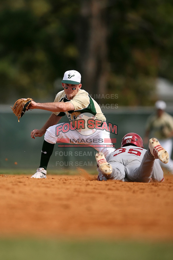 February 22, 2009:  Shortstop Sam Mende (8) of the University of South Florida during the Big East-Big Ten Challenge at Naimoli Complex in St. Petersburg, FL.  Photo by:  Mike Janes/Four Seam Images
