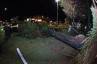 INDAIATUBA, SP - 11.10.2013: CHUVA CASTIGA CIDADE - INDAIATUBA - Chuva de graniso com fortes ventos castiga a cidade de Indaiatuba, queda de arvore atinge carro que estava parado na região central da cidade nesta segunda-feira (11). (Foto: Marcelo Brammer/Brazil Photo Press)