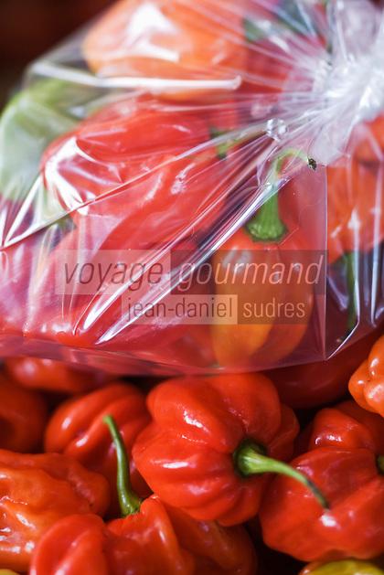 France/DOM/Martinique/ Saint-Pierre: le marché - détail étal pimenst végétariens