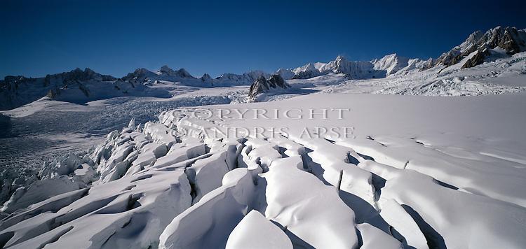 Fox Glacier. Westland National Park. New Zealand.