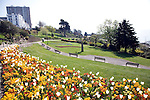 Flower beds on Cliff Gardens, Southend, Essex