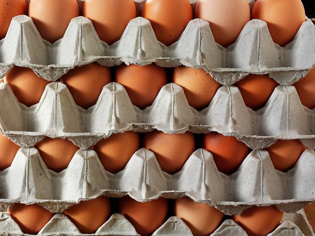 Tray of fresh brown free renge eggs