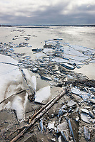 Spring breakup on the Copper River Delta, southcentral, Alaska.