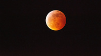 Super Blood Wolf Moon (Total Lunar Eclipse), Seattle, Washington, US