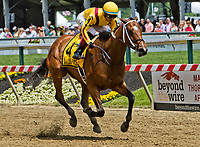 BALTIMORE, MD - MAY 19: Terra Promessa #4, ridden by Jose Ortiz, gets the win in the Allaire DuPont Distaff on Black-Eyed Susan Day at Pimlico Race Course on May 19, 2017 in Baltimore, Maryland.(Photo by Sue Kawczynski/Eclipse Sportswire/Getty Images)