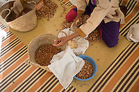 Morocco - Tidzi - A woman crushing the argan nuts at the Ajddigue cooperative. <br /> The popularity and profitabilty of the argan oil has also attracted the attention of profiteers. Some of the argan found in the big Moroccan cities is cut with sunflower oil, whose colour is very similar. Moreover, in order to profit from state subventions, many ordinary shops and businesses have disguised themselves as cooperatives, employing few women as window-dressing.