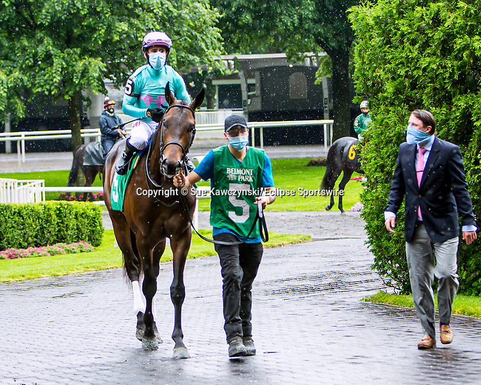 JUNE 03, 2020: Indoctrinate  in the paddock for $64,000 Maiden Special Weight, fortwo year ols going 5 furlongs, at Belmont Park, Elmont, NY.  Sue Kawczynski/Eclipse Sportswire/CSM