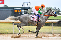 HOT SPRINGS, AR - APRIL 13:  Apple Blossom Handicap at Oaklawn Park on April 13, 2018 in Hot Springs,Arkansas.  #5 Unique Bella with jockey Mike E. Smith. (Photo by Ted McClenning/Eclipse Sportswire/Getty Images)